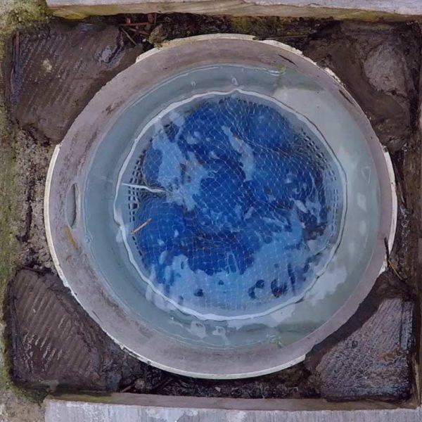 Ansicht von FIBALON skimmy im Skimmerkorb in Benutzung
